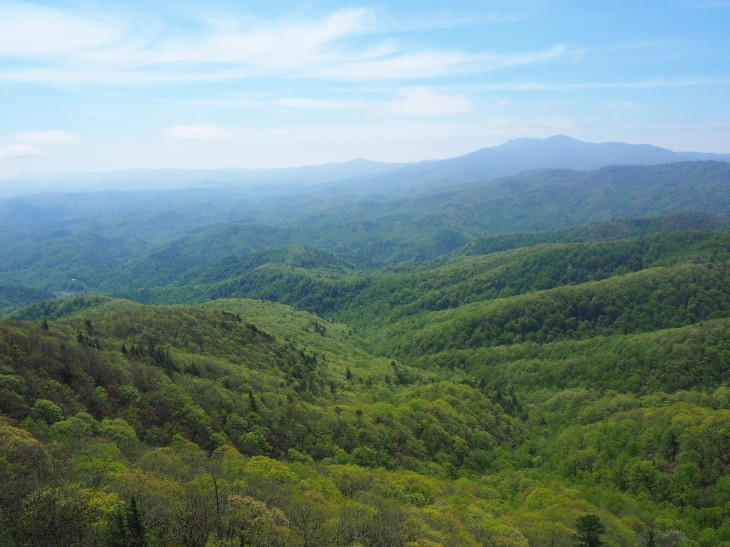 View from Blowing Rock